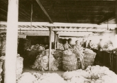 Beavens' wool department