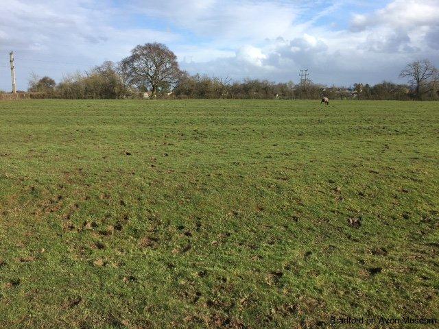 Ridge and Furrow in BG Tithe Field 261