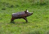 pig sculpture, Turleigh