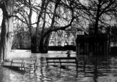 flood, Westbury Gardens 1920s?