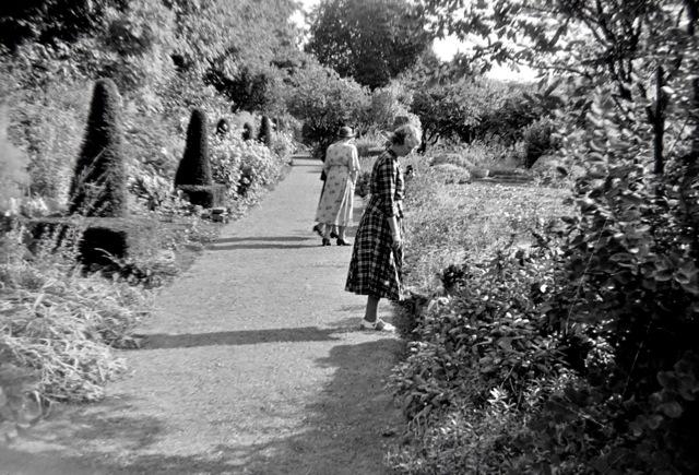The Courts Garden 1952
