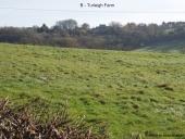 B - Turleigh Farm
