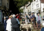 Market Street with sheep