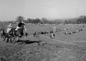 point-to-point horse race, Monkton Farleigh