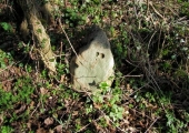 stone on the boundary between Rowley and Westwood
