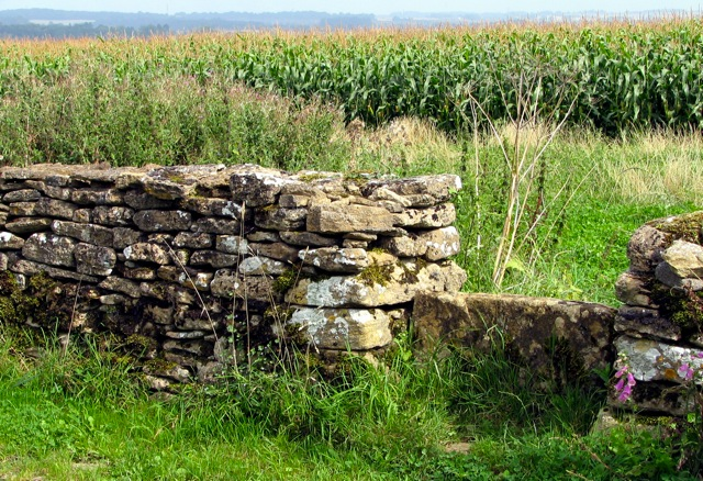 stone wall and stile, Ashley