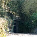 Poulton Quarry, Frome Road