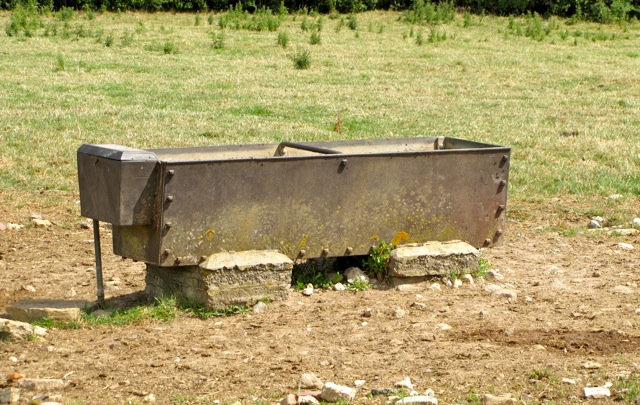 Uncles watertrough, South Wraxall