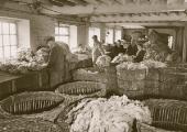 Beavens\' wool department