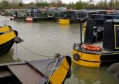 Widbrook canal marina, Kennet & Avon Canal